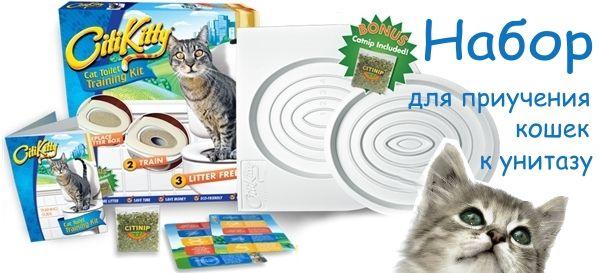 котов и кошек к унитазу